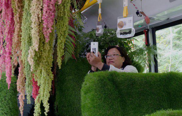 «اتوبوس جنگلی» در تایوان مسافران را شگفت زده کرد2