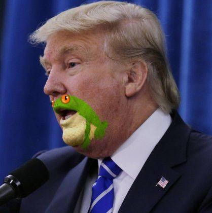 شباهت چانه و دهان ترامپ به قورباغه2