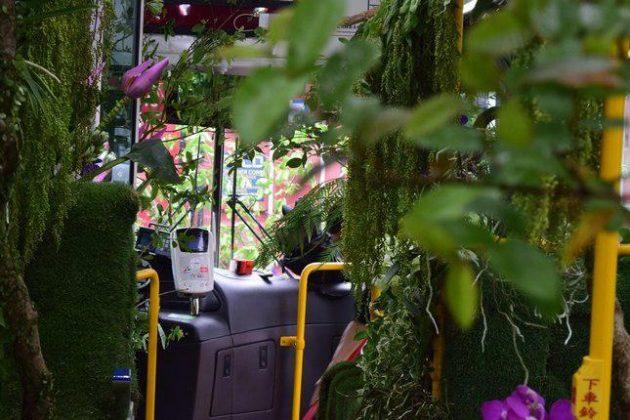 «اتوبوس جنگلی» در تایوان مسافران را شگفت زده کرد3
