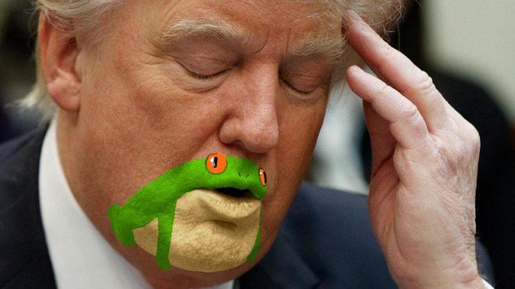 شباهت چانه و دهان ترامپ به قورباغه3