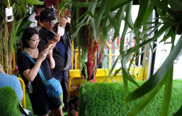 «اتوبوس جنگلی» در تایوان مسافران را شگفت زده کرد5