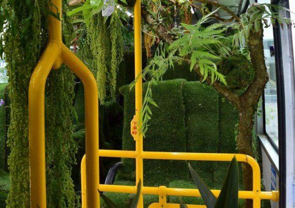 «اتوبوس جنگلی» در تایوان مسافران را شگفت زده کرد6