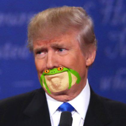 شباهت چانه و دهان ترامپ به قورباغه6