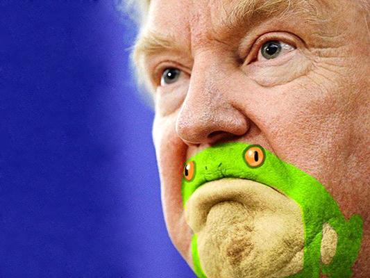 شباهت چانه و دهان ترامپ به قورباغه!