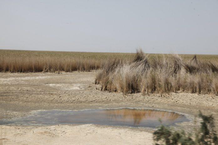 سدسازی ترکیه روی دجله سراسر ایران را درگیر ریزگرد میکند
