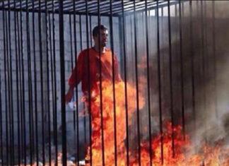Iran Attacks on ISIS Revenge for Jordanian Pilot's Burning Alive