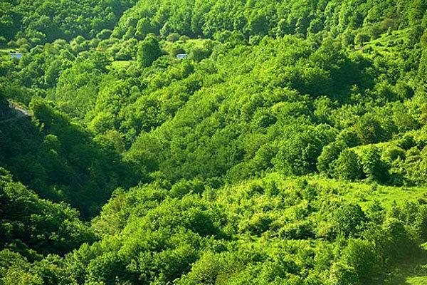 الطبيعة في ايران ..الجبل الأخضر فی آذربيجان الشرقية 1