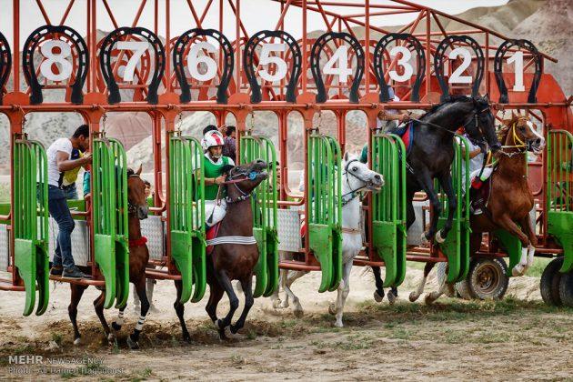 ایران .. سباق الخيل في آذربيجان الشرقية 10