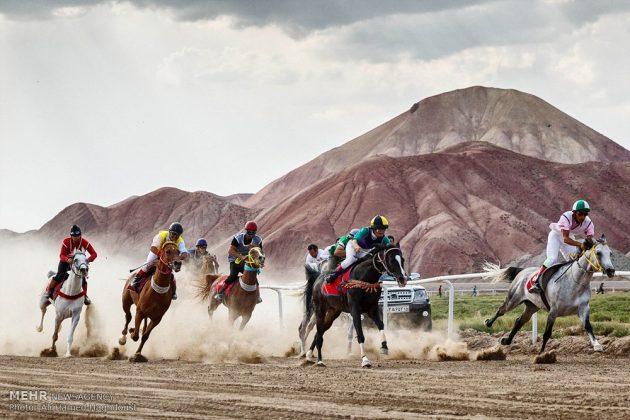 ایران .. سباق الخيل في آذربيجان الشرقية 12
