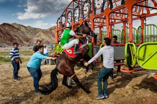 ایران .. سباق الخيل في آذربيجان الشرقية 14