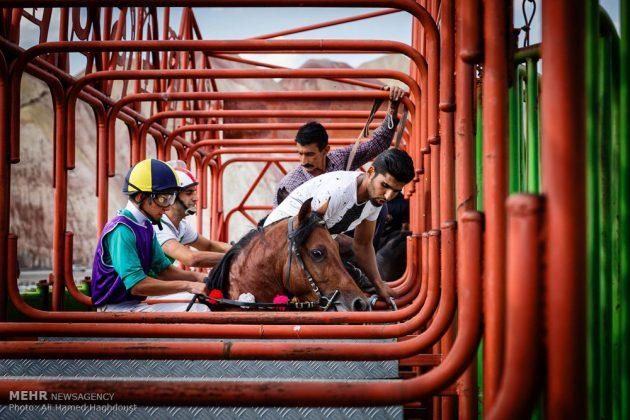 ایران .. سباق الخيل في آذربيجان الشرقية 15
