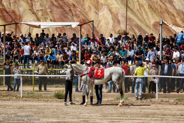 ایران .. سباق الخيل في آذربيجان الشرقية 18