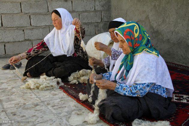 """ممثلو اليونسكو بصدد تسجيل""""كليم"""" الايراني عالمياً19"""