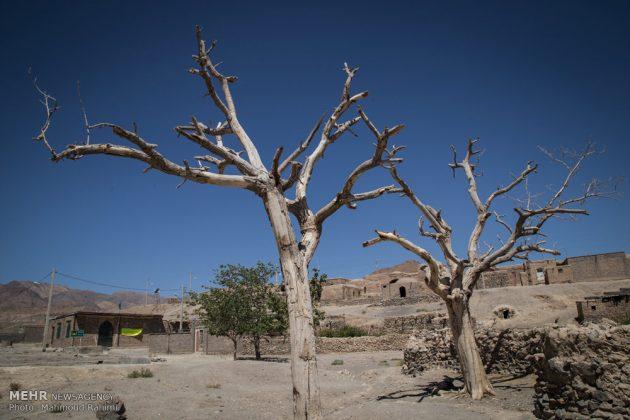 عقدان من الجفاف في خراسان الجنوبية 19
