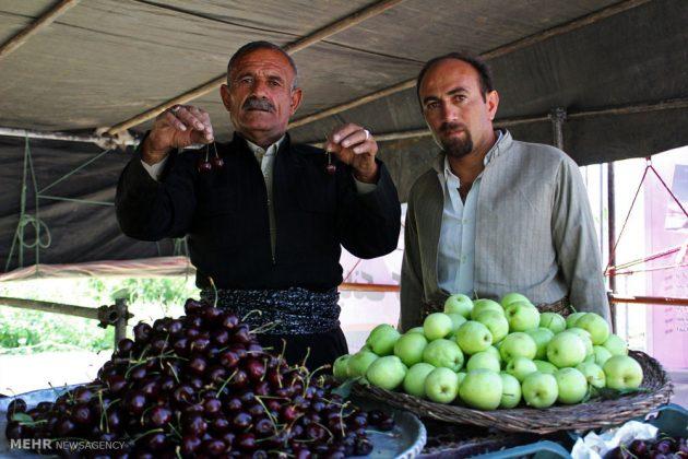 """مهرجان """"الكرز"""" في شمال غربي ايران24"""
