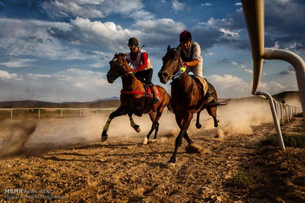 ایران .. سباق الخيل في آذربيجان الشرقية 5