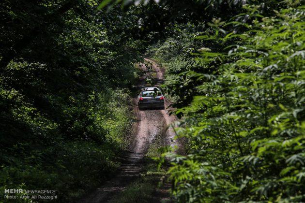 سباقات بطولة إيران للرالي فی غابات شمال ایران 6