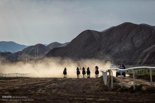 ایران .. سباق الخيل في آذربيجان الشرقية 8