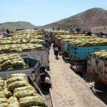 ايران .. تصدير اكثر من مائة الف طن من المحاصيل الزراعية للعراق