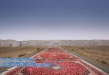 Red Region Project: Carpets Show Chaos in Mideast1