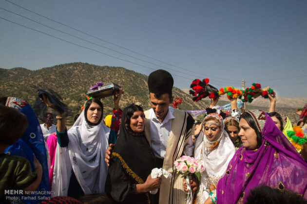 Symphony of Colours in Iran's Local Wedding Ceremonies10