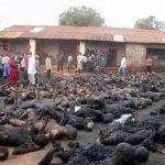 مدينة قم .. وقفة إحتجاجية لإدانة المجازر بحق مسلمي ميانمار