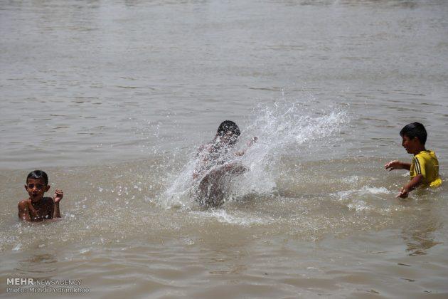 جواميس الماء في نهر كارون في أهواز17