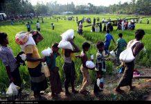 المساعدات الایرانیة توزع بین اللاجئین الروهینغا2