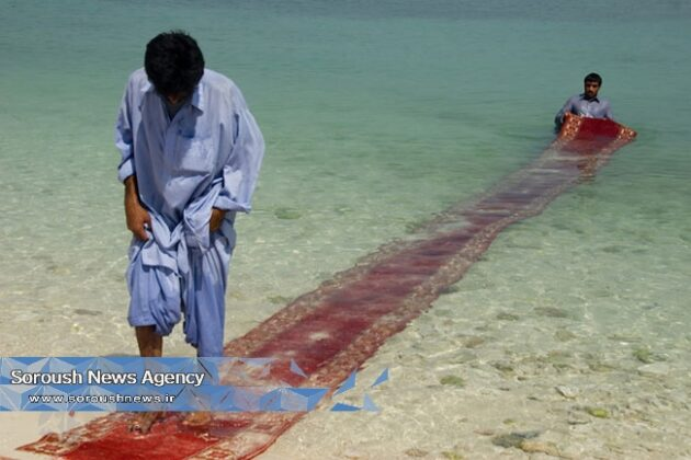Red Region Project: Carpets Show Chaos in Mideast20