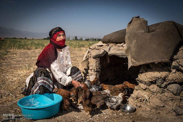 التعايش السلمي بين مختلف القوميات الايرانية في خراسان الشمالية 21