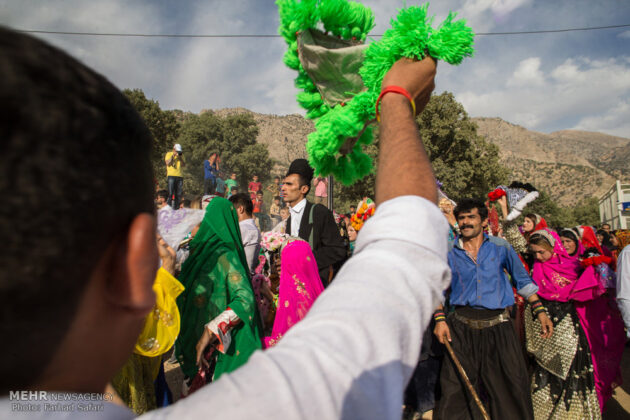 Symphony of Colours in Iran's Local Wedding Ceremonies3