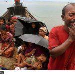 نائب برلماني يحث الدول الاسلامية على انقاذ مسلمي ميانمار