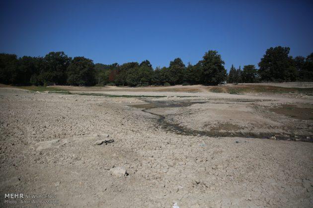 بحيرات محافظة مازندران الايرانية تواجه خطر الجفاف6