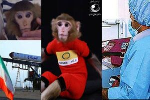 Iranian Space Monkeys Give Birth to Baby