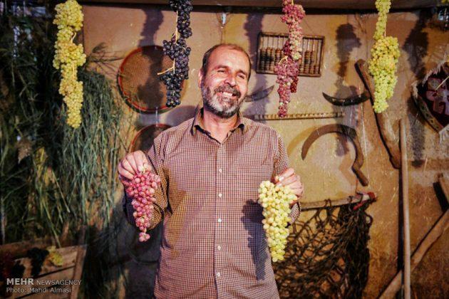 """مهرجان """"القرية"""" في """"زنجان"""" الإيرانية 7"""