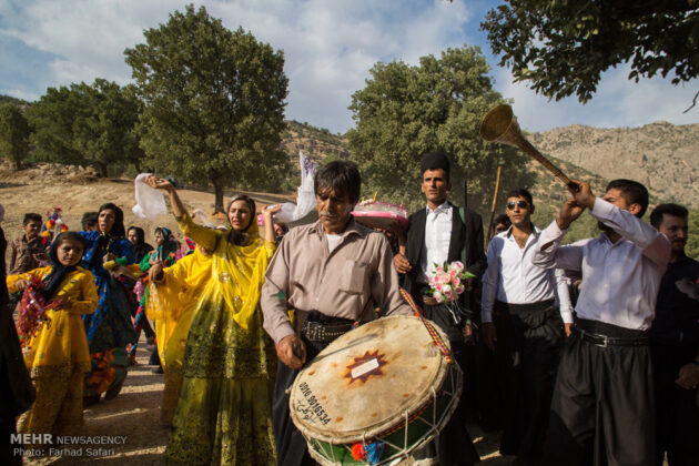 Symphony of Colours in Iran's Local Wedding Ceremonies8