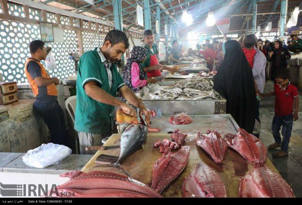 سوق السمک في بندر عباس جنوب ايران 10