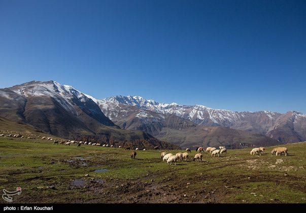مرتفعات مازيجال الساحرة في ايران 10