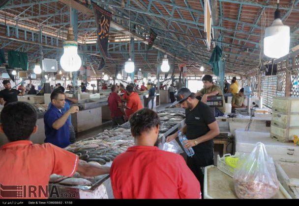 سوق السمک في بندر عباس جنوب ايران 2