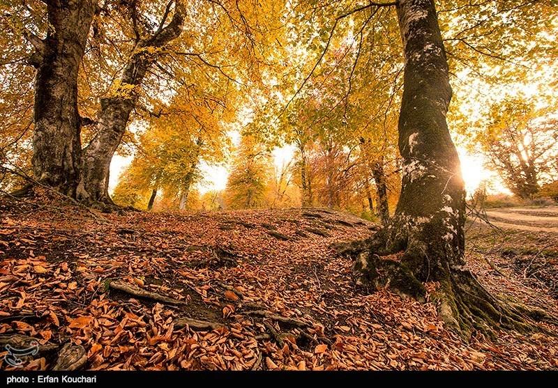 مرتفعات مازيجال الساحرة في ايران 2