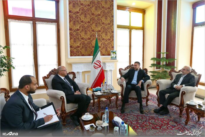 Top Iranian, Egyptian Officials Discuss Bilateral, Regional Issues