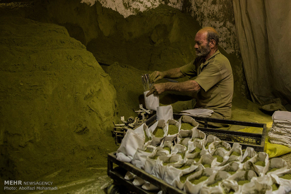مراحل طحن وتغليف الحنة عند أقدم عطار في يزد
