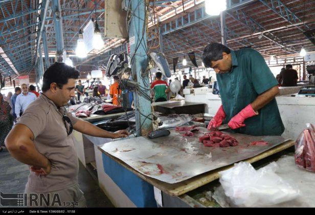 سوق السمک في بندر عباس جنوب ايران 3