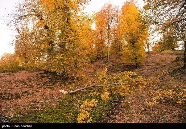 مرتفعات مازيجال الساحرة في ايران 4