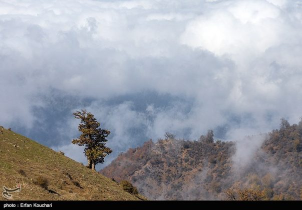 مرتفعات مازيجال الساحرة في ايران 5