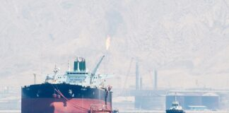 Iran Turns Oil-Polluted Lands into Green Belts