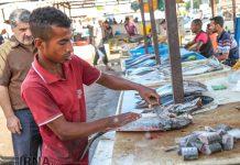 سوق السمک في بندر عباس جنوب ايران 6