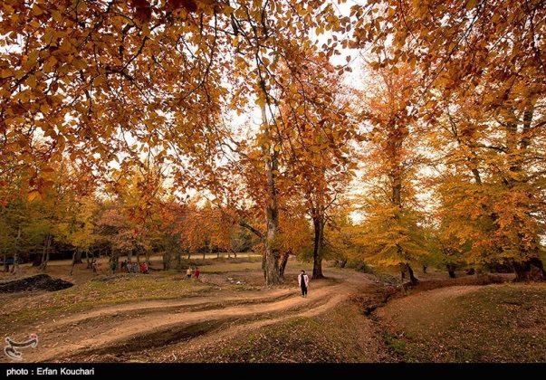 مرتفعات مازيجال الساحرة في ايران 6