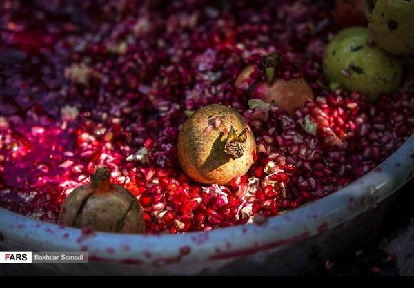 حصاد الرومان في كردستان الايرانية 7