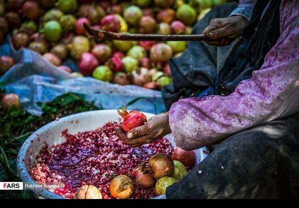 حصاد الرومان في كردستان الايرانية 8